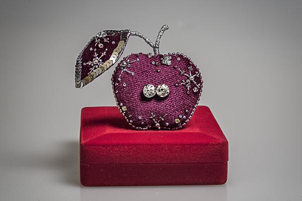 winter embroidery velvet apple